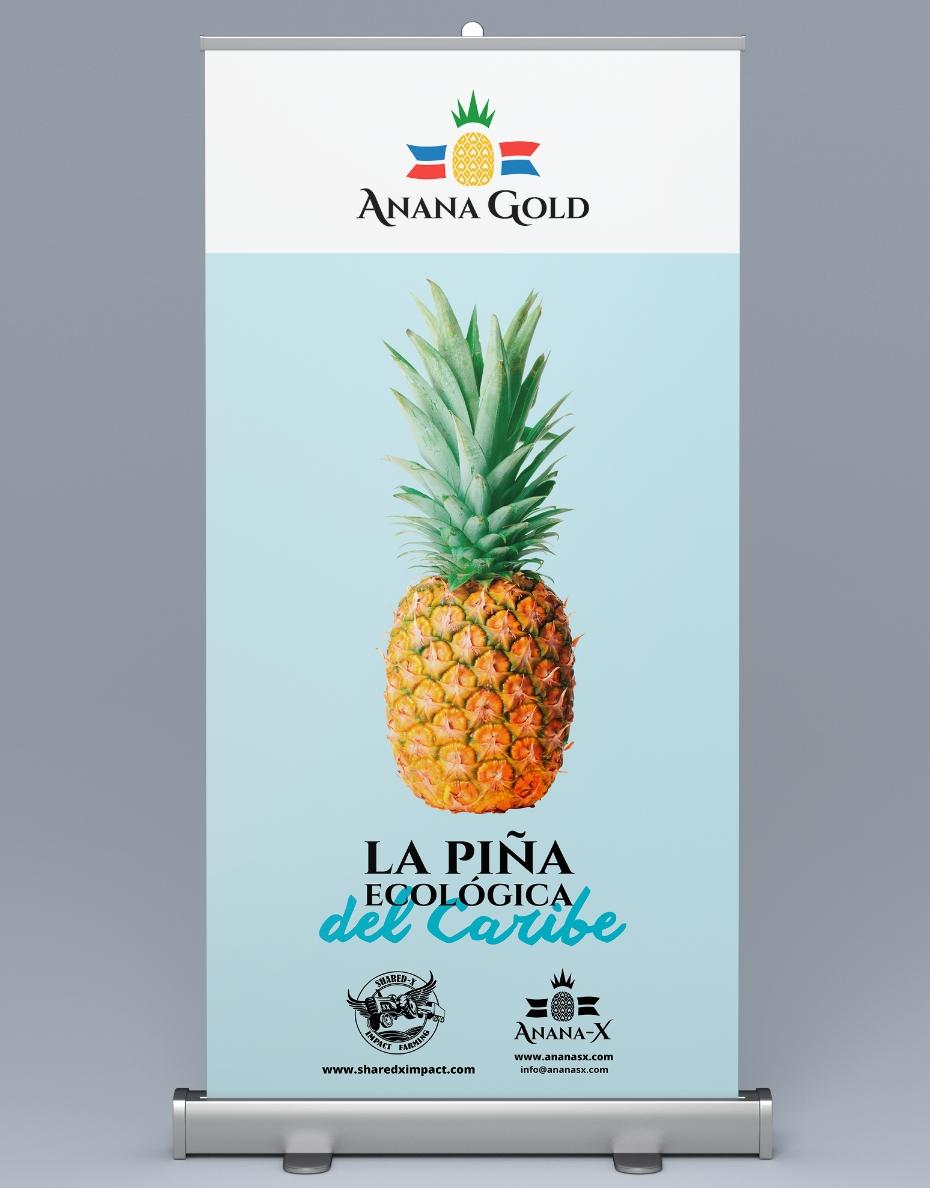 anana gold