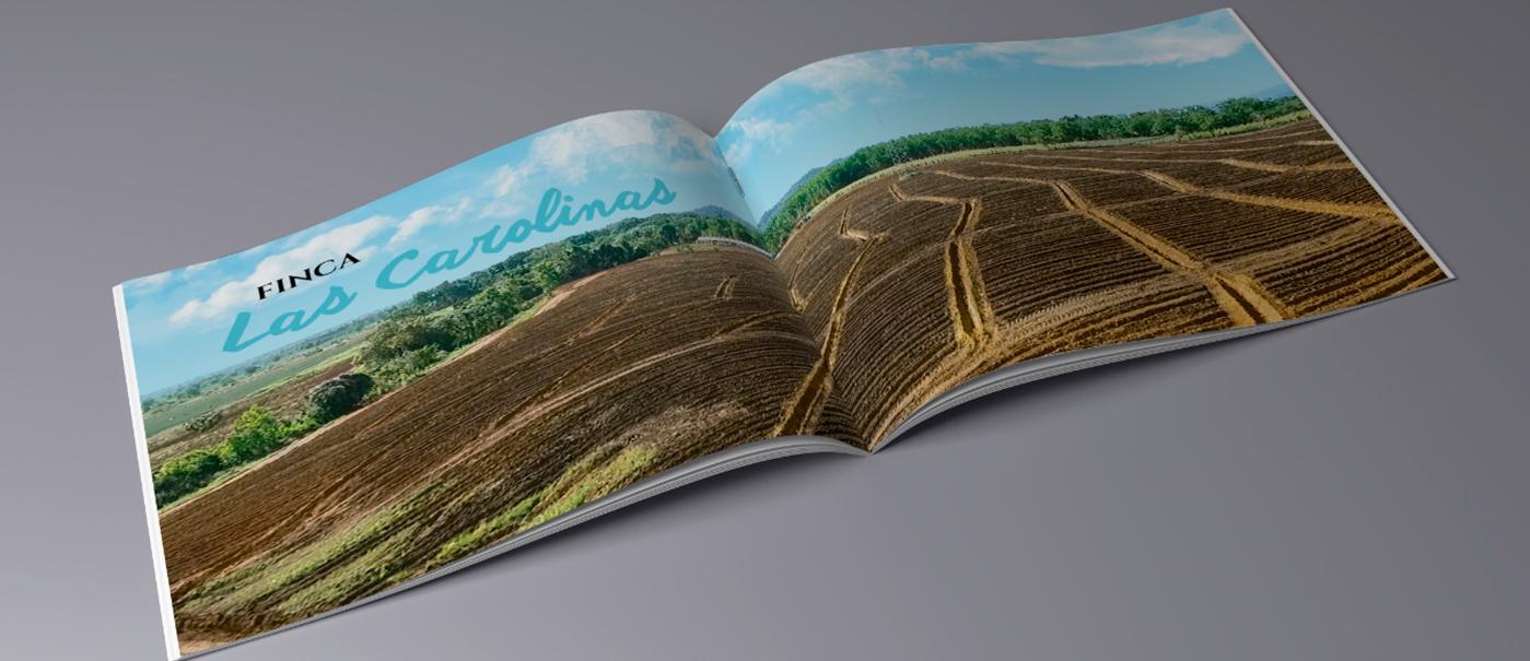 libro ananax