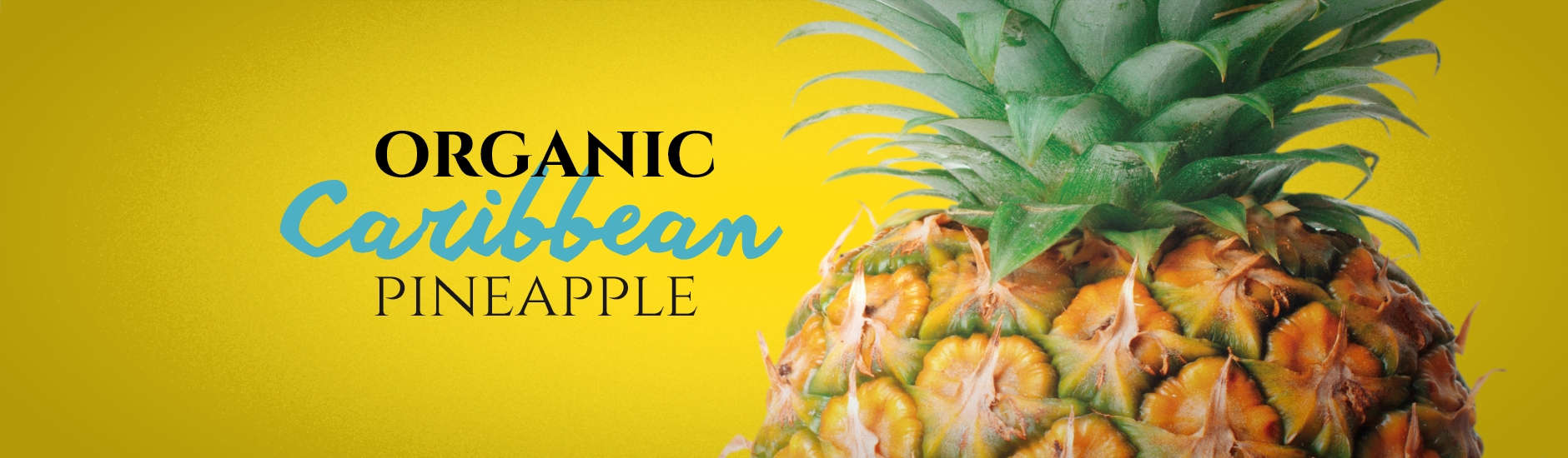 organic caribbean pineapple