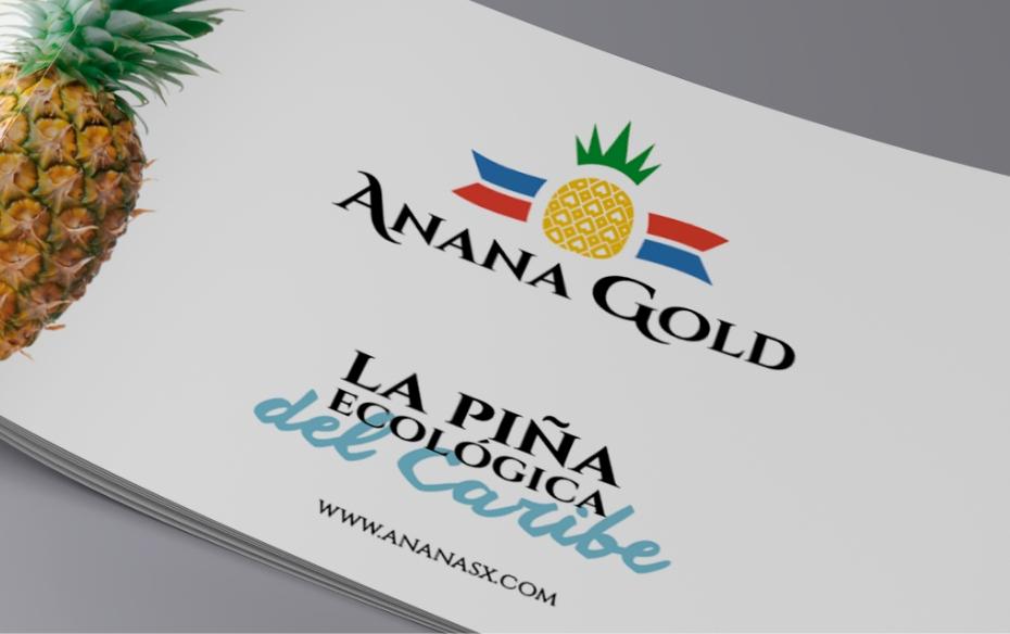 tarjeta ananax