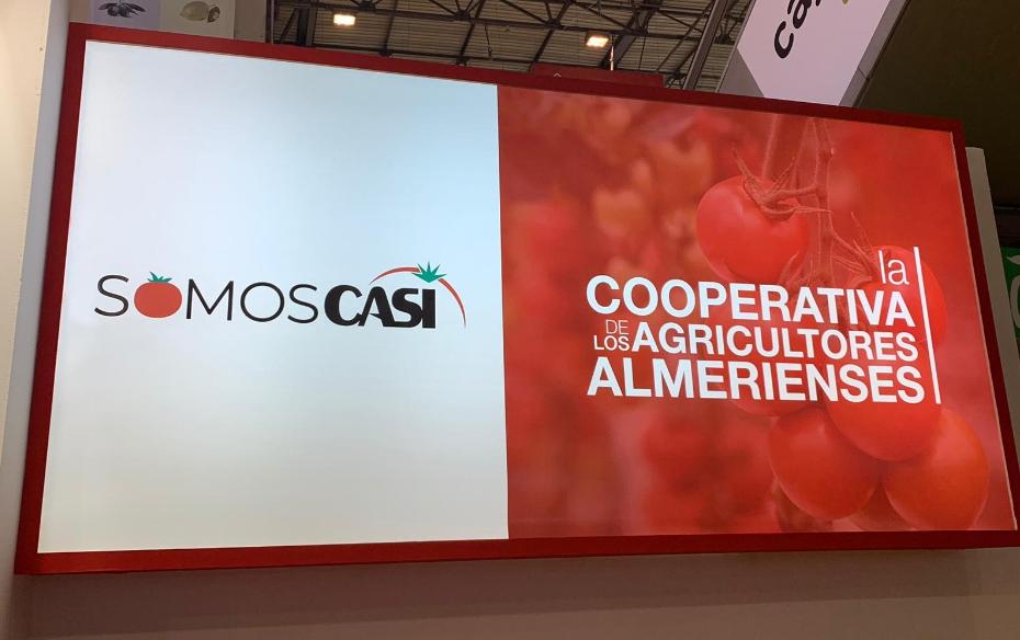 Casi - Cooperativa Almería