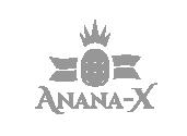Anana-X - Taller Agencia