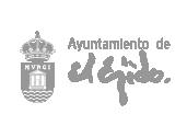 Ayuntamiento El Ejido - Taller Agencia