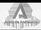 Clientes - Junta Andalucía - Taller Agencia